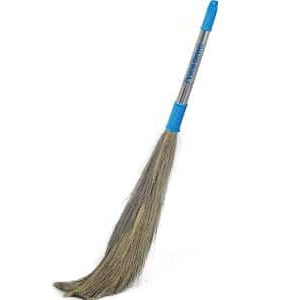 Indian Broomstick
